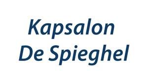Kapsalon De Spieghel
